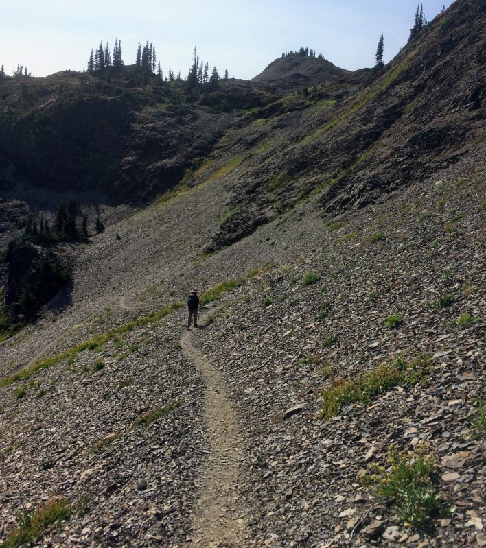 Badger Valley trail