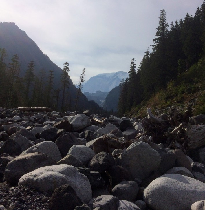 Looking upstream from the Carbon River valley.