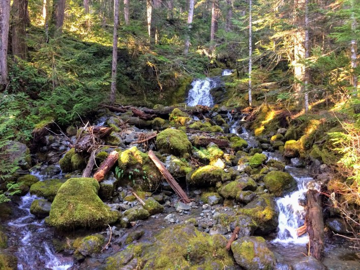 The trail to Lena Lake crosses several pretty waterfalls.