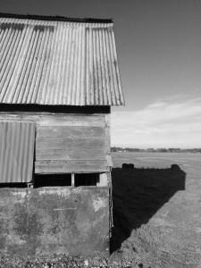 In monochrome, this barn evokes hard times.