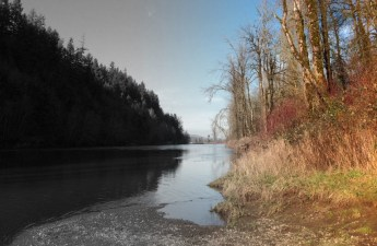 From black-and-white to color, the Chehalis River along the Discovery Trail.