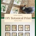 DIY Botanical Print Gallery Wall