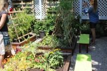 Plan Outdoor Garden Party Laurenkellydesign