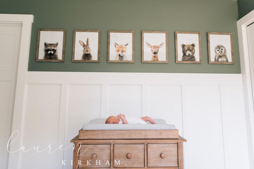 saratoga-newborn-lifestyle-photographer-lauren-kirkham-photography-9039