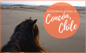 Horseback Riding in Concón, Chile with Ritoque Expeditions