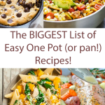 The Biggest List of Easy One Dish Meals!