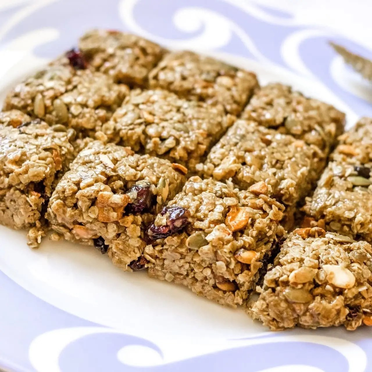 Bite Snacks Protein Granola Bar - Lauren's Lighthouse