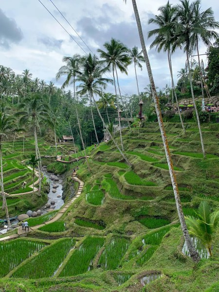 Bali Terraces by Keawe Hurst, kayinspired