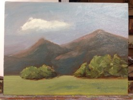 My finished study - with a monochromatic wash