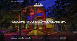 Dune Wellness Group Website, Homepage