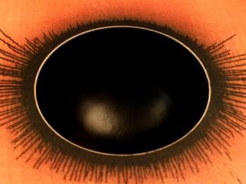 Détail de l'oeil