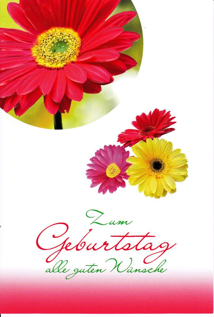 Geburtstag Blumen Bilder  geburtstagssprche von herzen