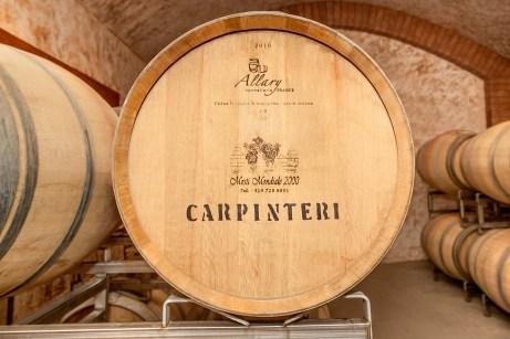 Photo de Tony Carpinteri (Vignoble Carpinteri) pour le magazine Panoram Italia. La licence est prévu uniquement pour le magazine Panoram Italia ainsi que ses publications connexes (médias sociaux et autres).