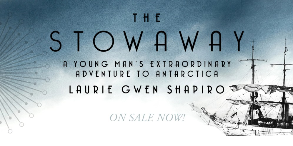The Stowaway cover