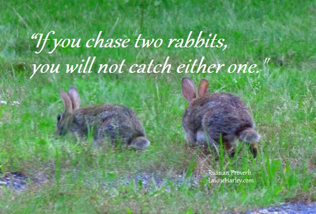 If you chase two rabbits, you will not catch either one
