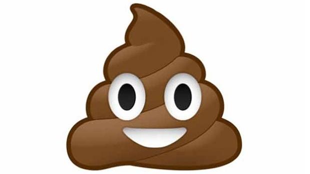smiling-poop-emoji-crapplicant