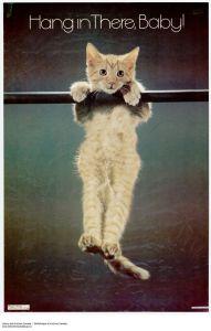 failure-cat