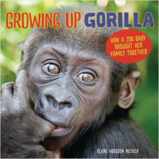 Growing Up Gorilla cover