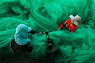 Fish nets:  Pham Ty from Vietnam