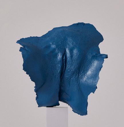 plaster cast of vulva in deep blue