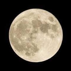 月のリズムで美温整活