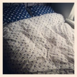 Pug bedding