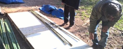 Alignement des bambous sur des palettes
