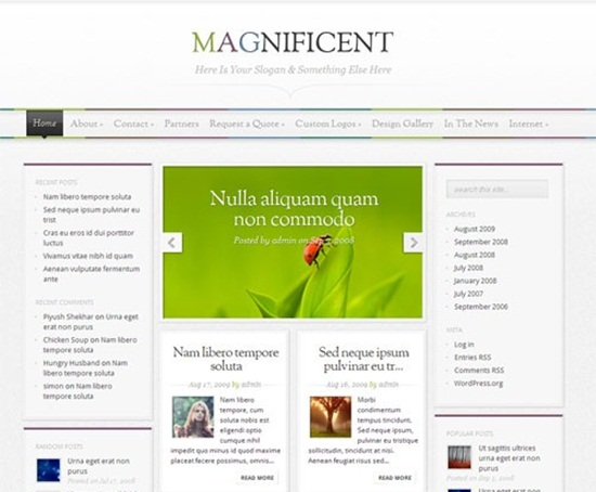 pro wordpress themes141