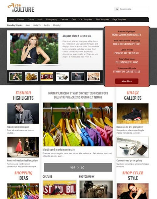 pro wordpress themes151