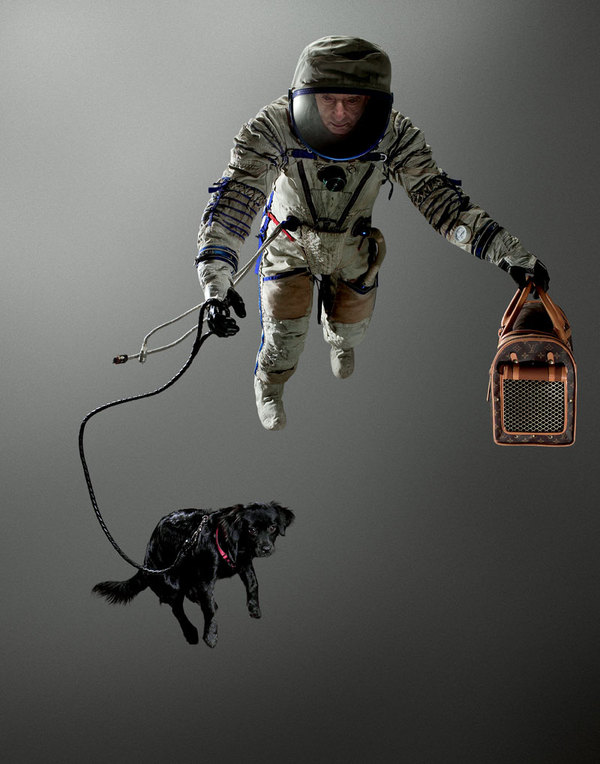 space dog photography