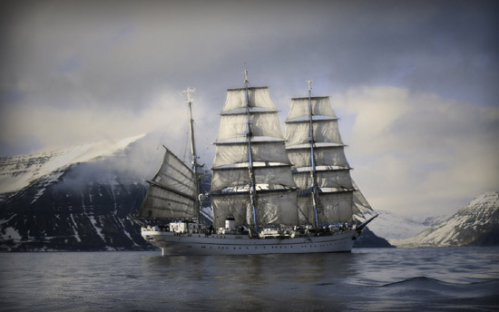 Striking Pirates & Battle Ships From The Digital World