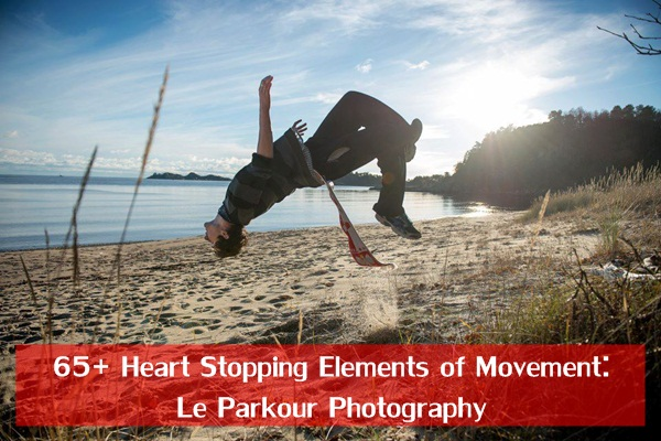Elements Of Movement : Heart stopping elements of movement le parkour