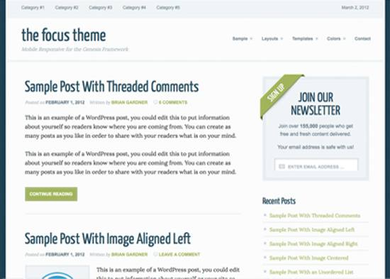 focus responsive wordpress theme