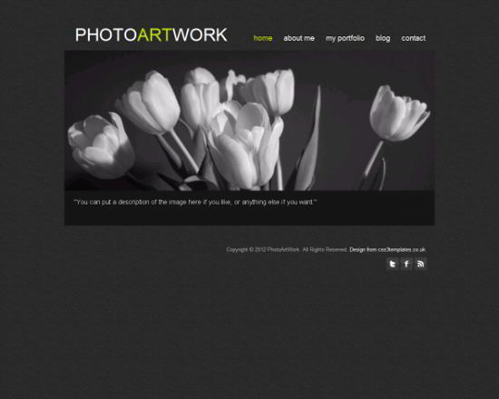 Photo Artwork Free HTML5 Template