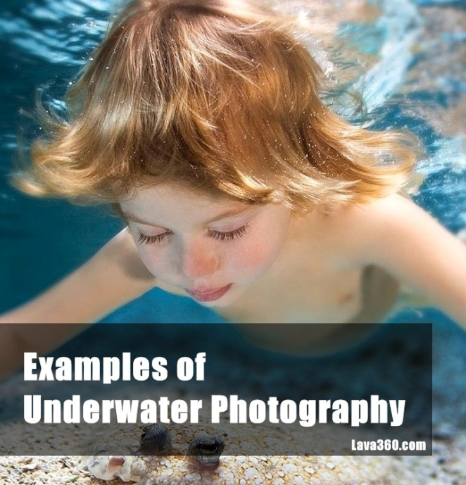 Examples of Underwtare Photography
