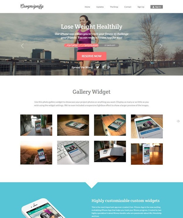 Crowd Funding WordPress Themes of the Year6