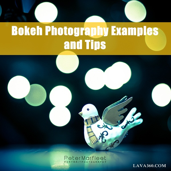 Bokeh Photography Examples and Tips1.1