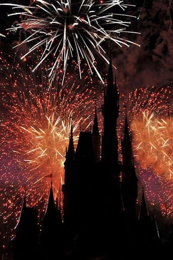 Incredible Firework Pictures28