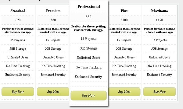 How To Build A Pricing Table With CSS3 Animation