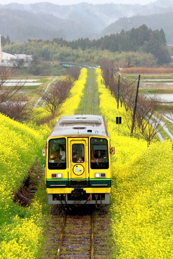 Examples of Transportation Photography26