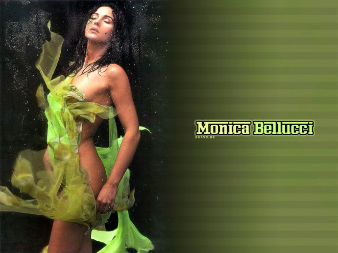 Sexy Monica Bellucci HD Wallpaper (4)