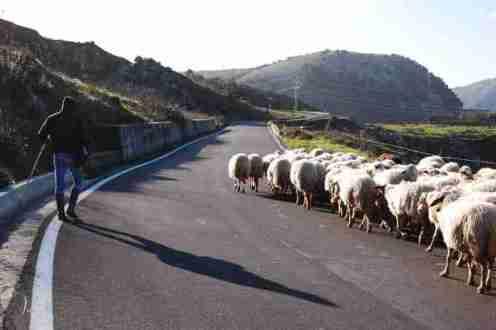 光と影…シチリア内陸の風景が切ない
