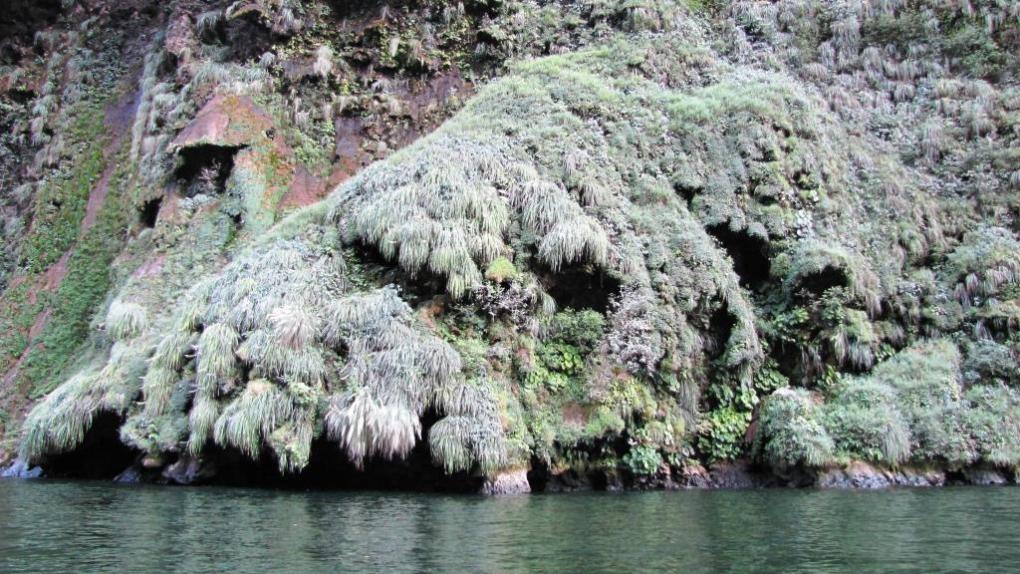 Canyon del Sumidero 8