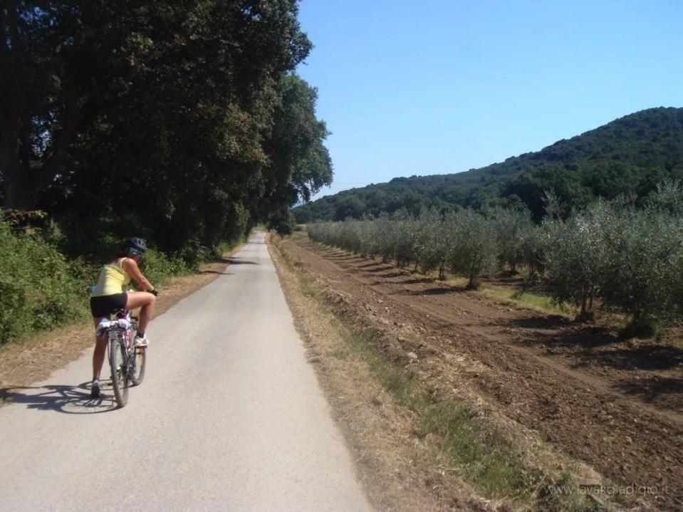 viaggiare in bici itinerario