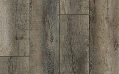 Authentic Plank *3011 Forest Grove* Sample