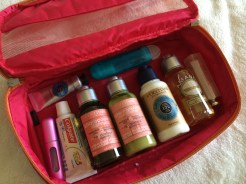 Personal Care Bag