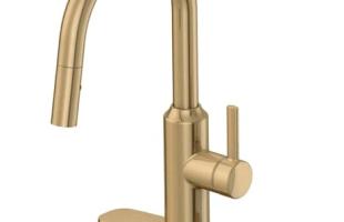 Danze Gold Kitchen Faucet