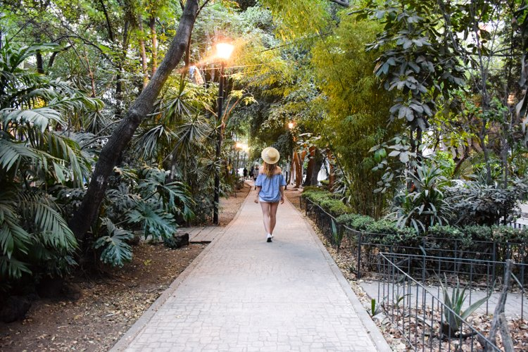 Parque Mexico - Mexico City's Trendiest Neighborhoods