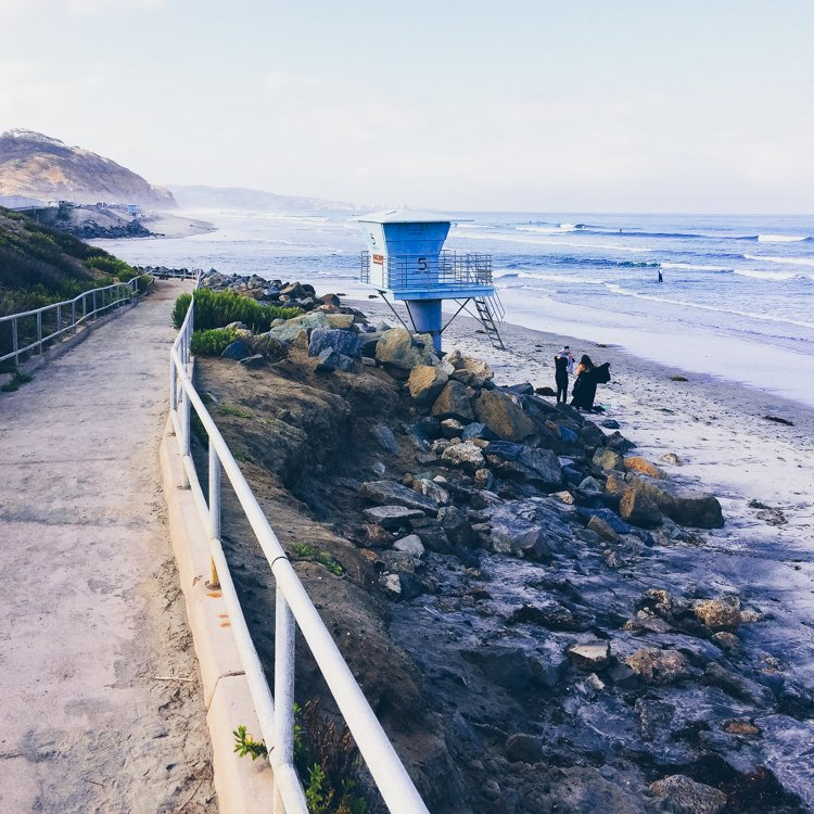 Torrey Pines State Beach - Best Beaches in San Diego
