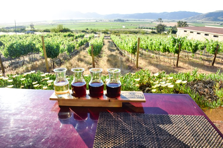 Baja California Guadalupe Valley Wineries, Hotel Hacienda Guadalupe